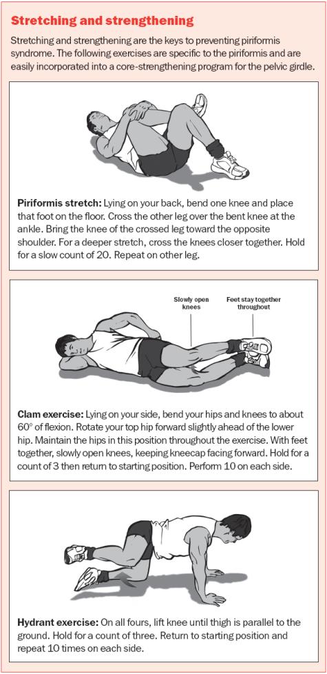 Piriformis Syndrome Osteopata E Fisioterapista Dott Luciani